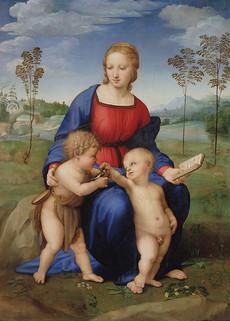 Madonna_del_cardellino_dopo_il_re_2